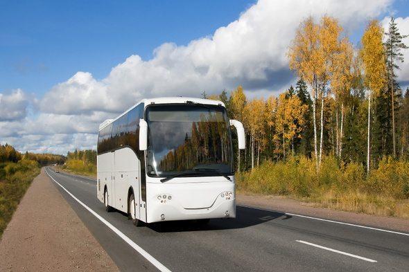 Rugen busreizen